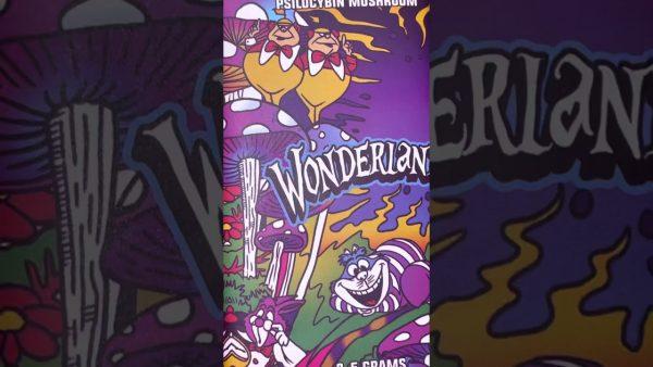 Wonderland Mushroom Chocolate Bars